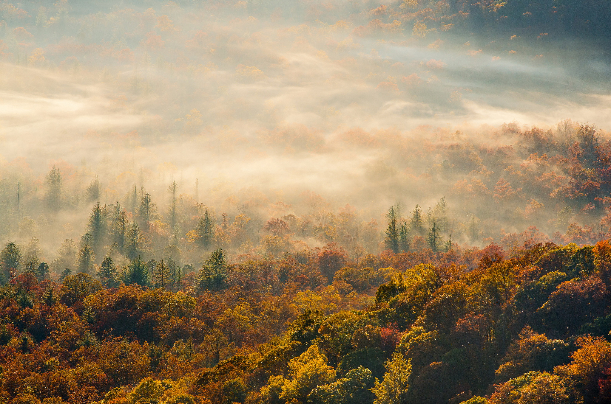 Autumn-mountain-fog.jpg
