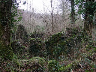 Mossy_ruins_-small.jpg