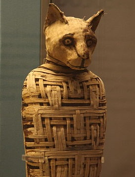 600px-British_museum__Egypt_mummies_of_animals__4423733728_.jpg