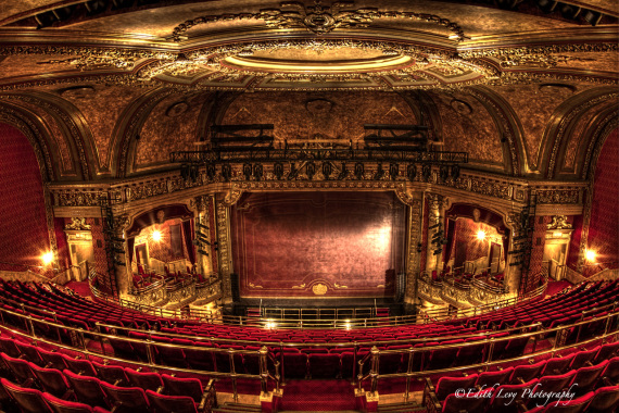 the-elgin-theatre_viewable.jpg