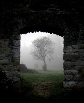 144668-stock-photo-tree-stone-wall-barrier-fog-ruin-house-of-worship.jpg