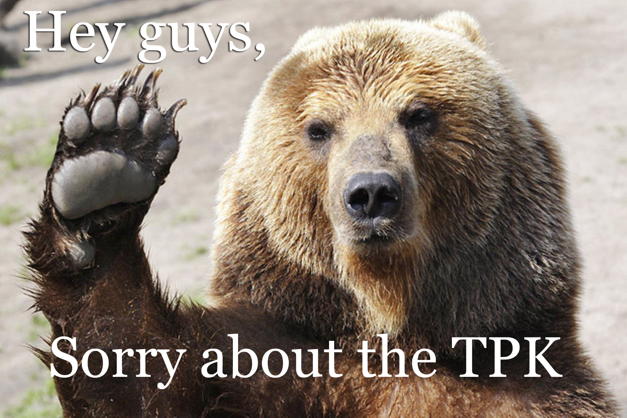 tpk_bear2_copy.jpg
