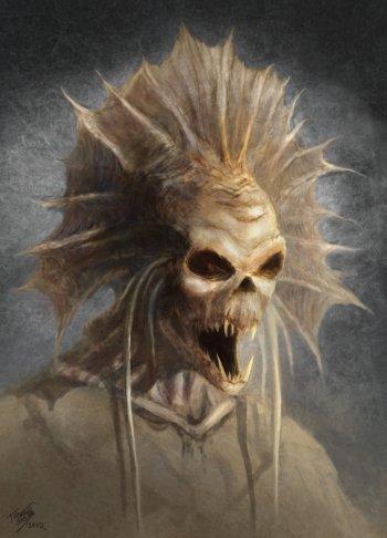 kuo_toa_skeleton.jpg