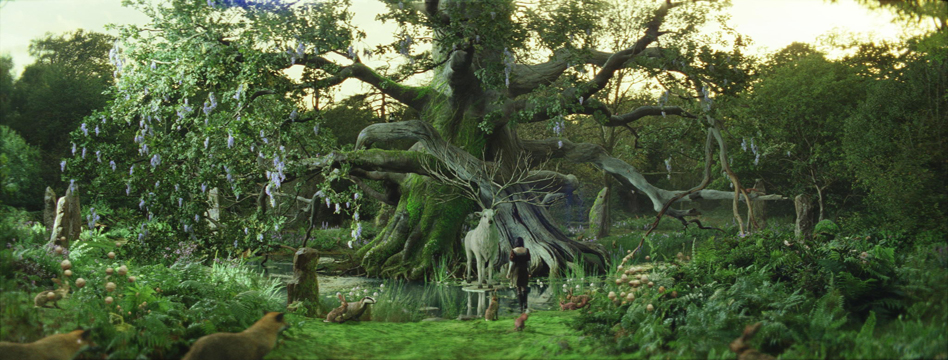 swath-enchantedforest_2.jpg