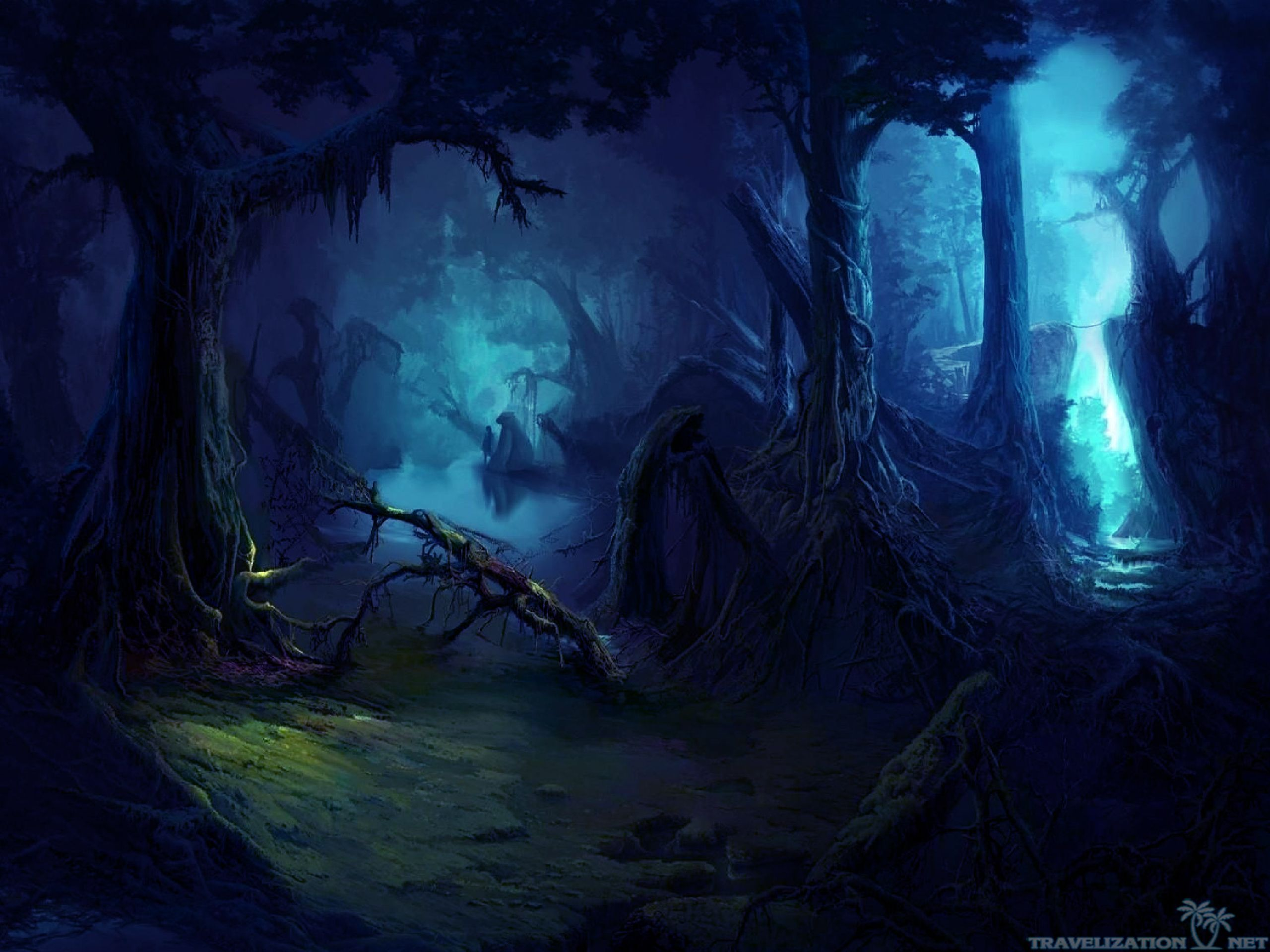 magical-side-of-dark-forest-wallpapers-2560x1920.jpg