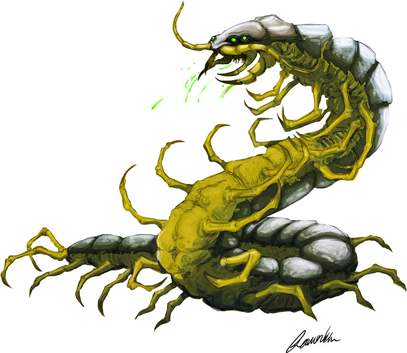 Giant-Centipede-smaller.jpg