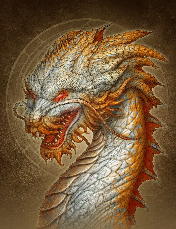 white_dragon_b3e9f5c160bddef8a47be63d98dc804a.jpg