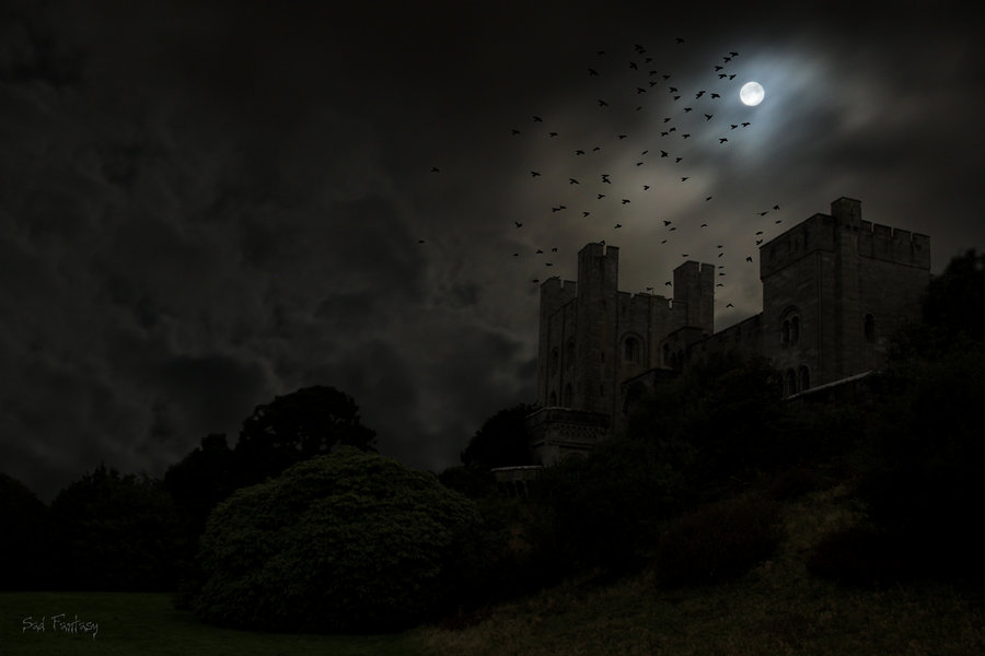 dark_castle_and_birds___no_1_by_sad_fantasy-d5mlxea.jpg