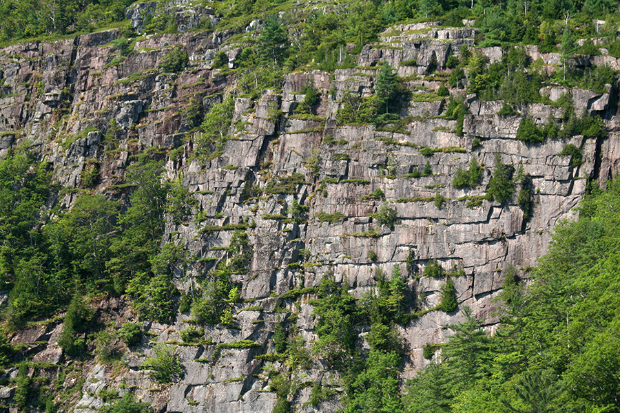 acadia_mountain_cliff_face.jpg
