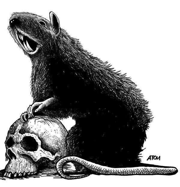 Giant_Rat.jpg