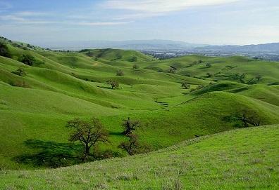 Dwynnen_Hills.jpg