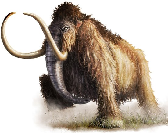 wooley_mammoth_by_critical_dean_s.jpg