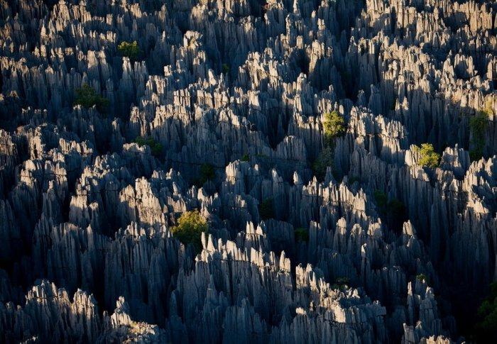 Madagascar_11.jpg