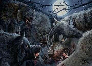 Werewolf22.jpg