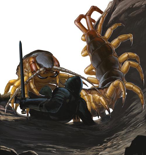 Giant_Centipede.jpg