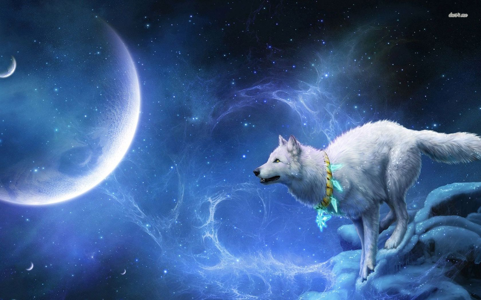 28672-wolf-looking-at-big-moon-1680x1050-fantasy-wallpaper.jpg