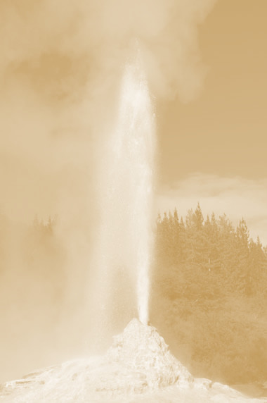 geyser-lady-knox-new-zealand_gold.jpg