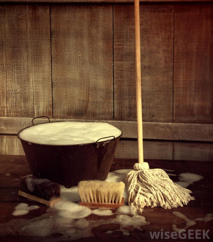 mop-with-pan-of-soapy-water.jpg