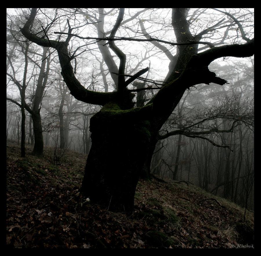 dark_cernunnos_by_hluthvik-d33b21v.jpg