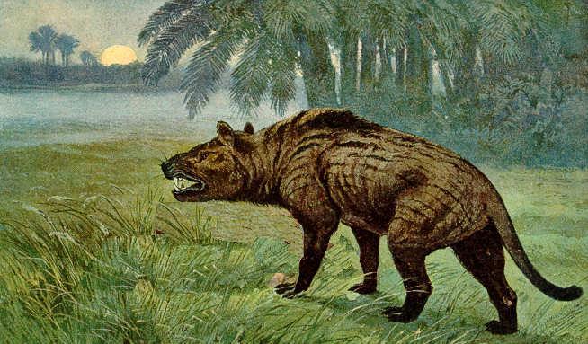 hyenadon.jpeg