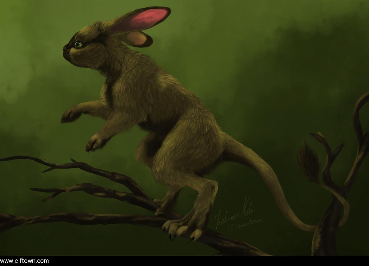 Tree-Rabbit.jpg