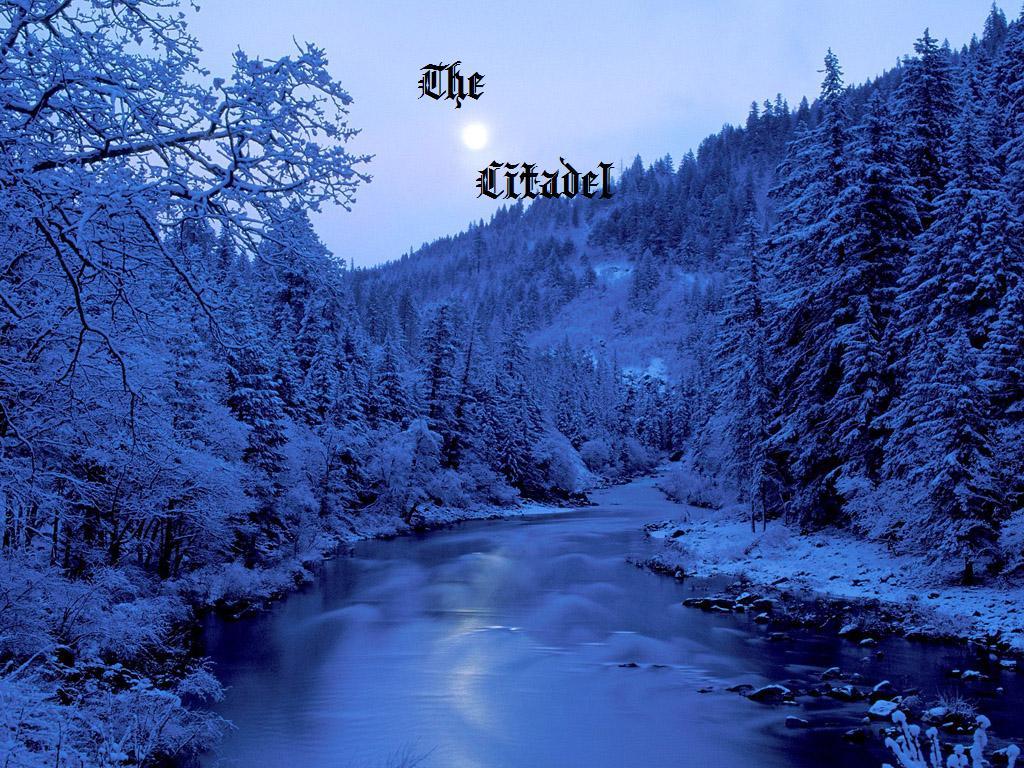 Winter night 1024x768 24482 edit 1