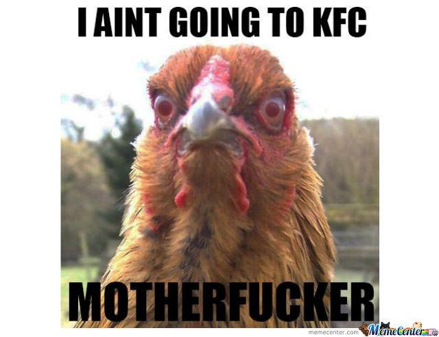 Friggin_Chicken_1.jpg