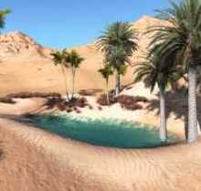 Lost Oasis