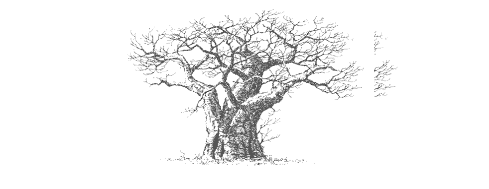 Thedeviltreetitle pic