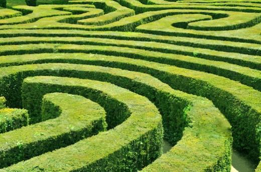 Hedge_Maze.jpg