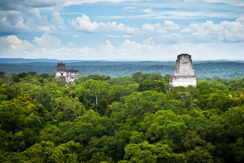 blick-vom-gigantischen-tempel-iv-auf-die-maya-ruinen-tikal-nationalpark-guatemala.jpg
