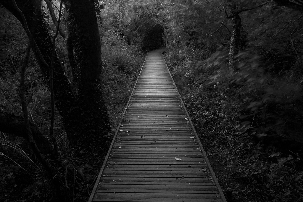 Dark path 970882