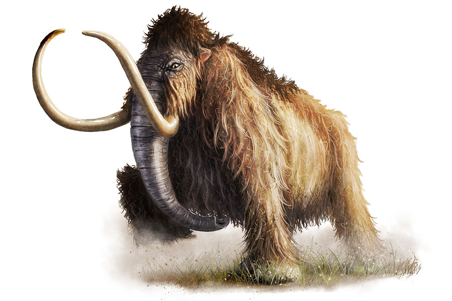 wooley_mammoth_by_critical_dean.jpg