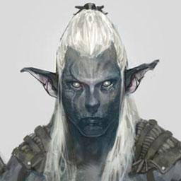 Nightrunner Elven Tribe