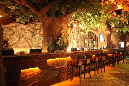 photo_rain-forest-resto-bar_andheri-west_mumbai_sibr35qg_3clj_1_300.jpg
