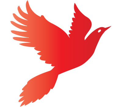 red-bird-Vector.jpg
