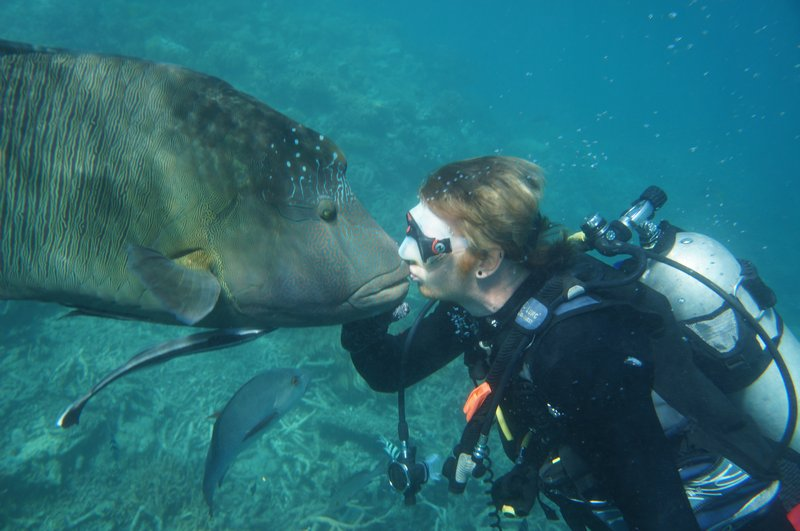 6912511-Callum-kissing-the-Wrasse-Fish-aka-Wally-0.jpg