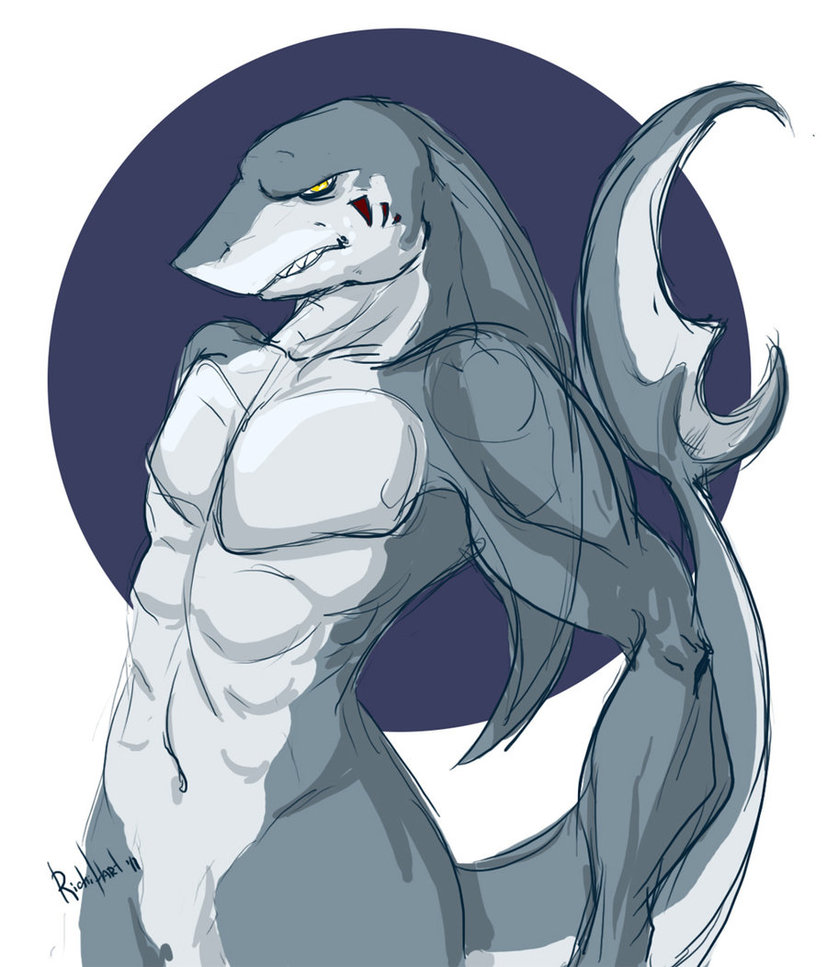 shark_form_by_richihart-d36gvn8.jpg