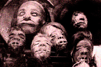 shrunken-heads_fcamp.jpg