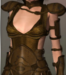 Repulsion_Leather_Armor.png