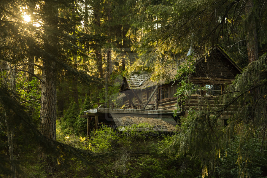 cabin_in_the_woods_by_cassiemerryman-d5fb3dm.jpg