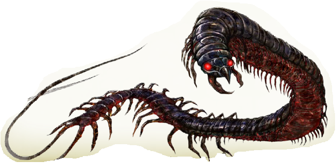 whiptail-centipede.png