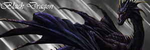 Black_Dragon_Banner_by_Kaimos.jpg