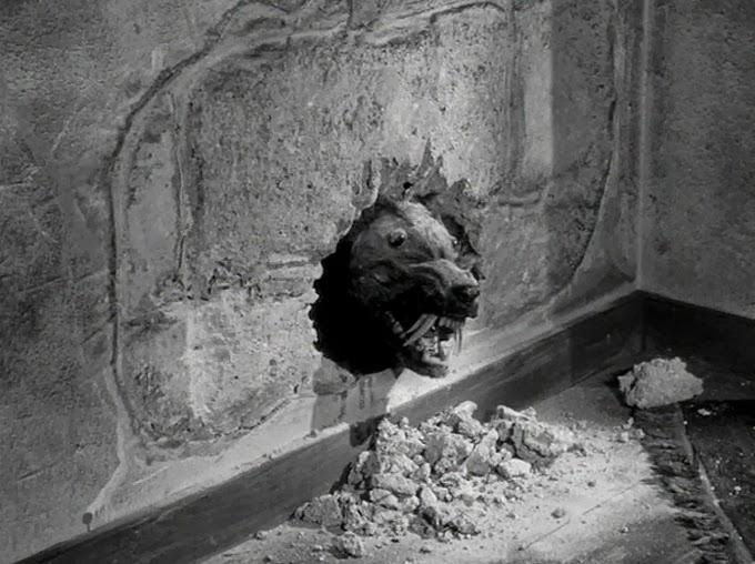 A-Killer-Shrew-Chews-Through-the-Wall.jpg