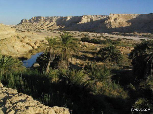 incredi_desert_oasis_Funzug_org_26.jpg
