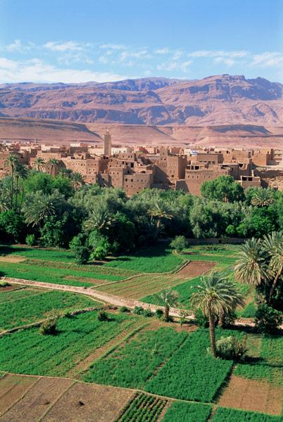 oasis-tinerhir-morocco_L.jpg