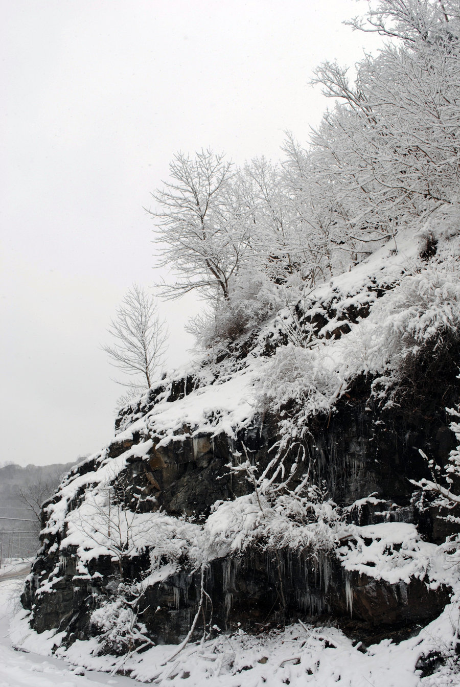 Snowy_Cliffside_by_Bawwomick.jpg
