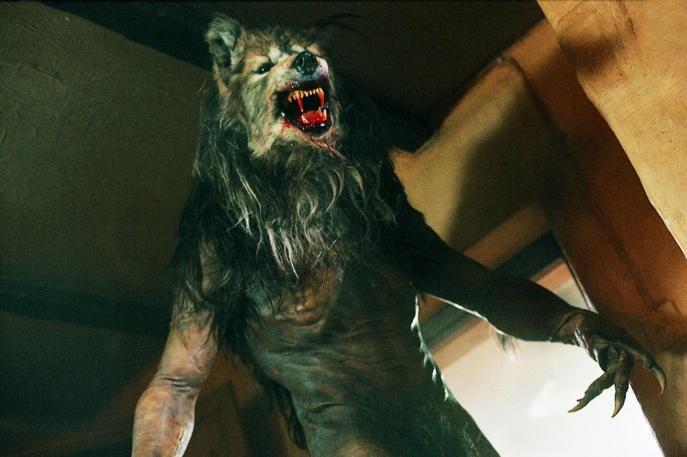 dogsoldier-werewolf-top-5-werewolf-movies.jpeg