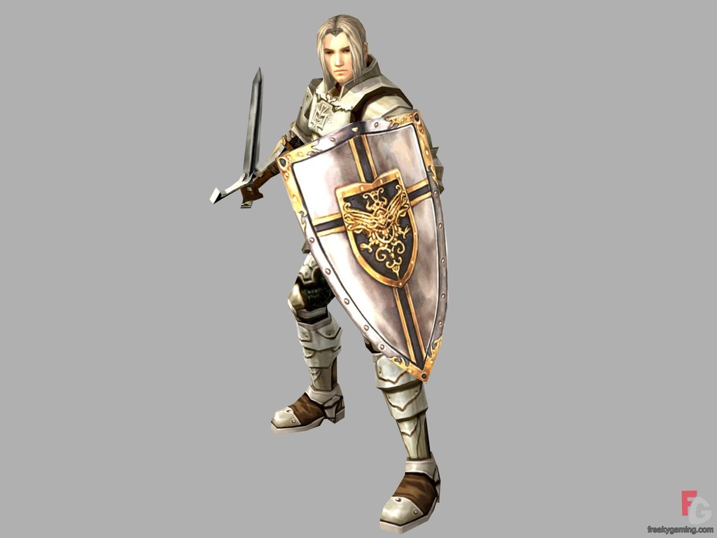 Players can choose one of five character classes: elf, dark elf, knight