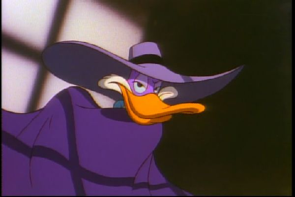 Darkwing duck brooding